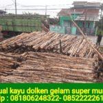 Jual Kayu Dolken Di Bandung